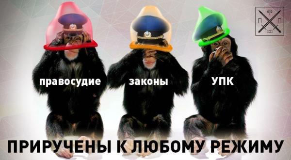 За разгон Майдана беркутовцы получали по 3-5 тыс грн, - Горбатюк - Цензор.НЕТ 436