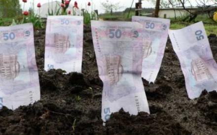 Коррупционеры от науки украли сотни тысяч гектаров земли