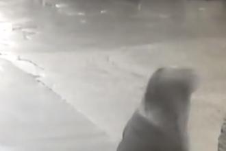 Перед убийством Немцова Дурицкая ходила в спа-салон, а после забирала вещи из его квартиры