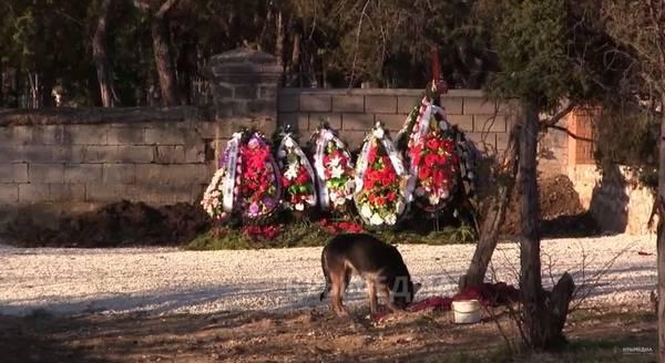 Как погиб Виктор Янукович-младший — подробности