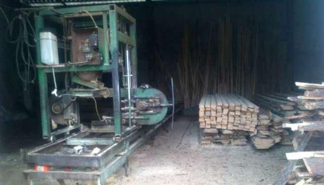 На Харьковщине правоохранители задержали вора древесины