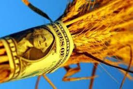 Экс-глава Аграрного фонда «разжился» на 500 миллионов на закупках сахара
