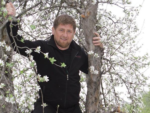 Рамзан Кадыров рассказал, за какие труды получил звание почетного академика РАЕН