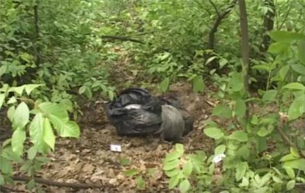Части тела львовянки собирали в лесу несколько дней. В убийстве подозревают россиянина