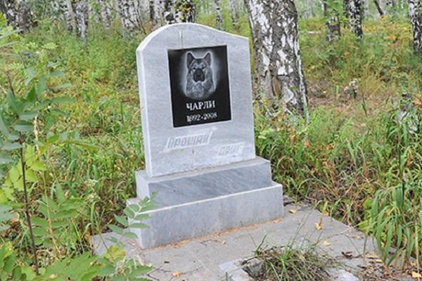 большей частью можно ли хоронить собак на человеческом кладбище банков
