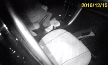 Полиция вернула в реальность судью, ушедшего в алкогольную нирвану за рулем авто
