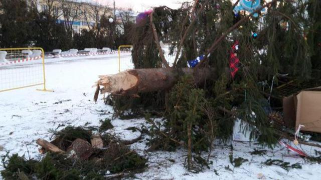 Среди бела дня на людной площади Переяслав-Хмельницкого упала главная елка