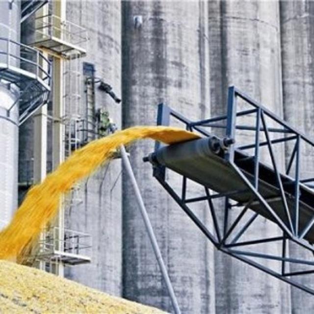 «Зерновая» коррупция: как украинцев лишили 120 миллионов гривен