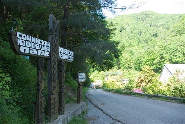 Ради племянницы Рогозина уволили директора Сочинского парка