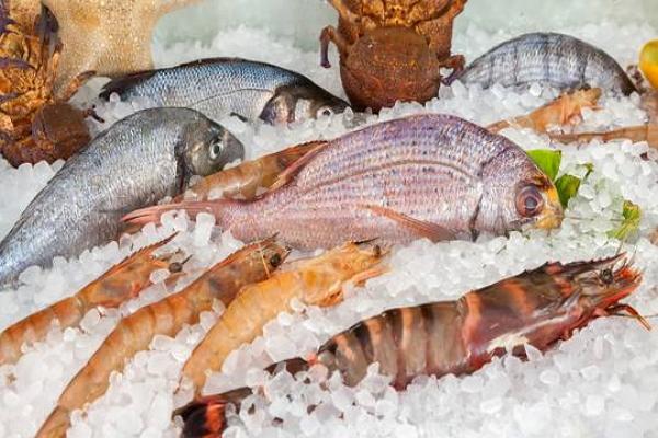 В рейтинге самых крупных рыболовецких компаний России лидирует поднявшийся на санкциях холдинг «Норебо»