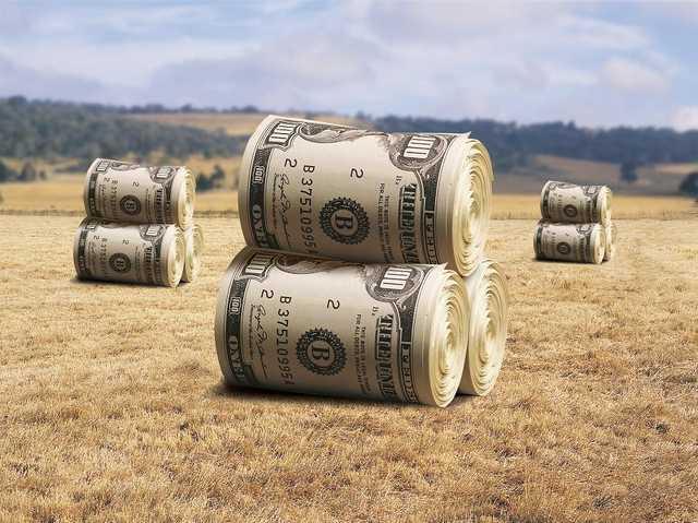 ОБСЕ узнало от владельцев земельных паев о коррупционно-рейдерских схемах в АПК Украины с участием чиновников Минюста