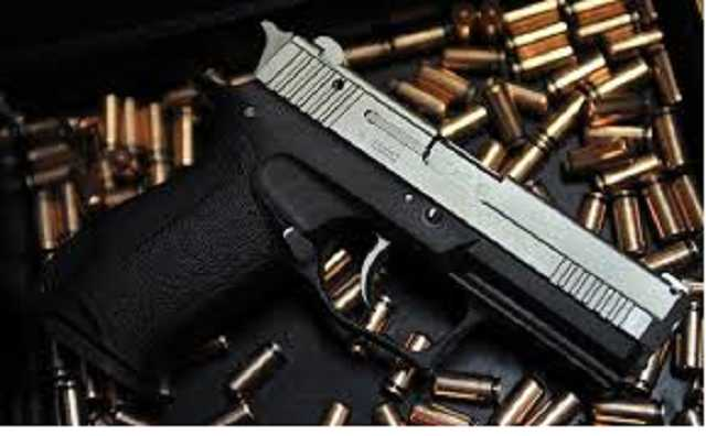 Депутат, хранивший незаконную винтовку, отделался условным сроком